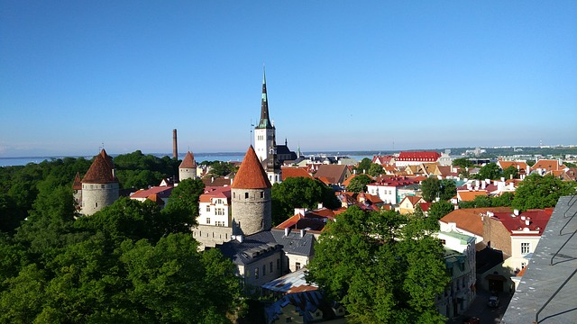 Top 10 Bitcoin-Friendly Countries - Estonia