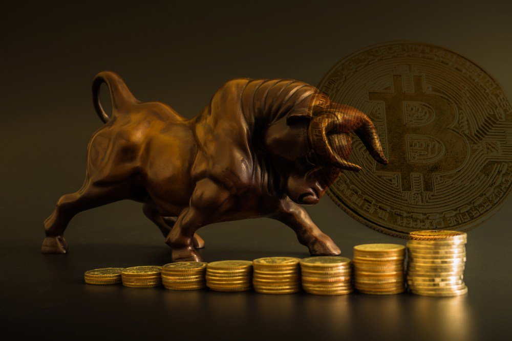 bitcoin price bull