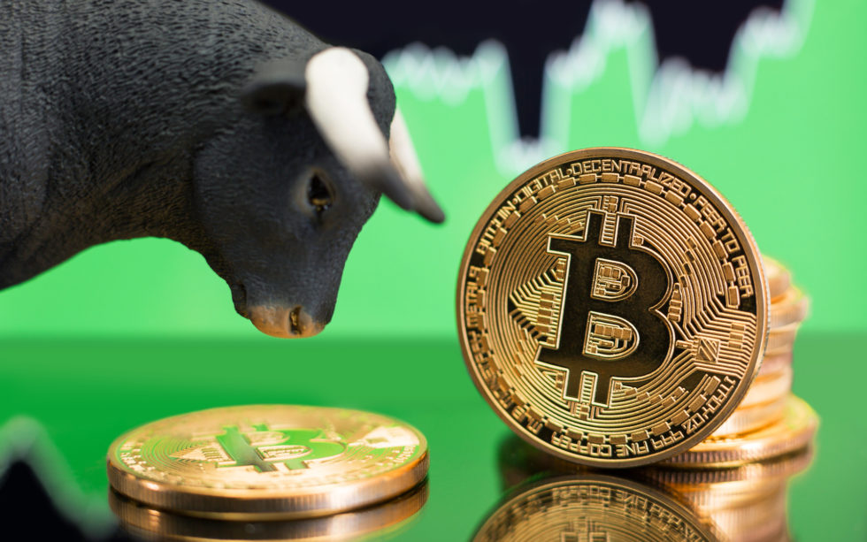 From Bears to Bulls: Financial Advisors Change Opinions About Bitcoin After Crash Course