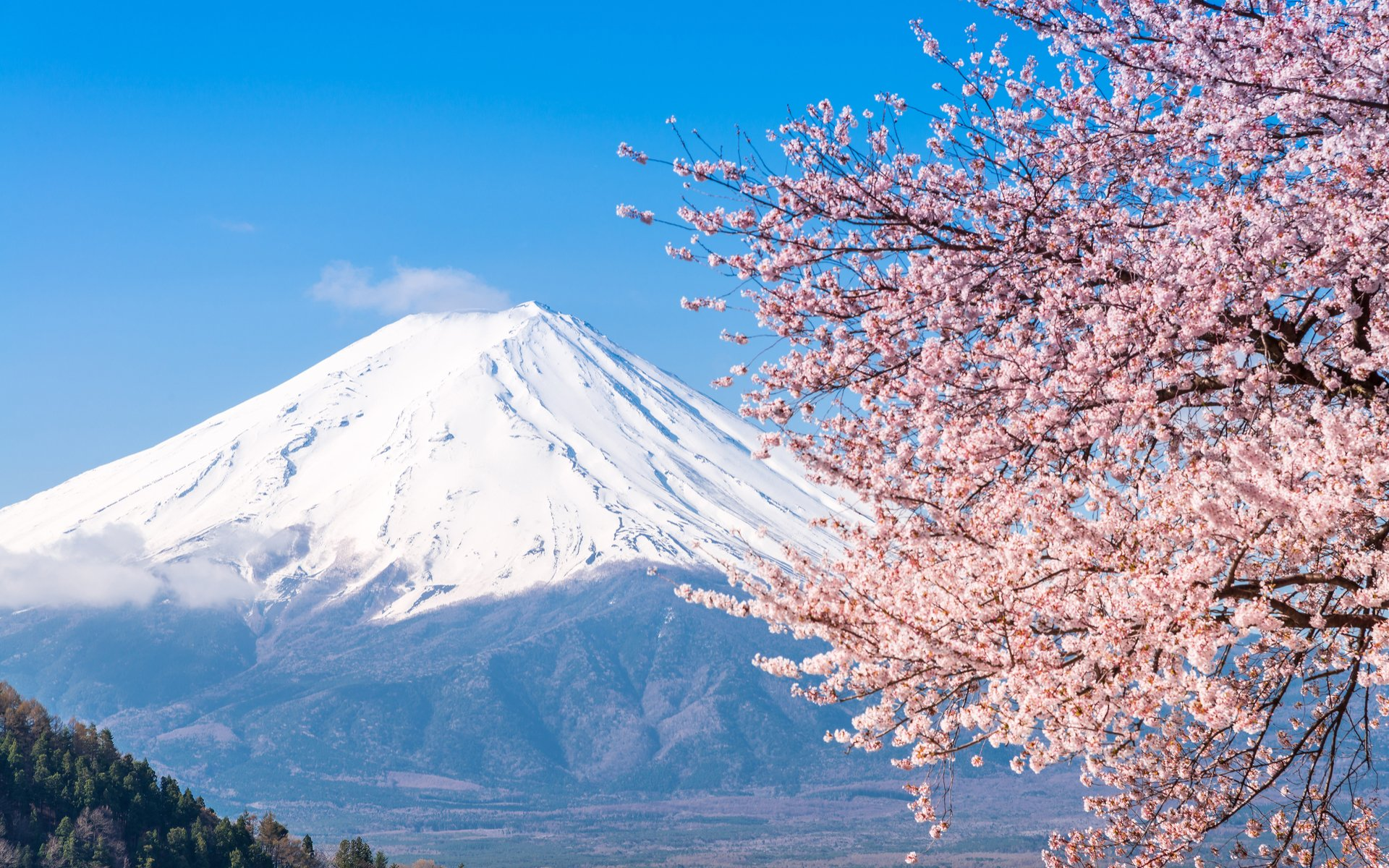 Japan Capping Cryptocurrency Leverage Trading in April 2020
