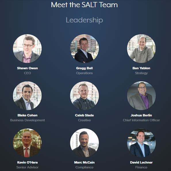 Salt coin team