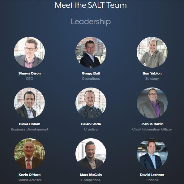 Salt coin team