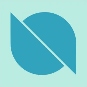 what is ontology ont coin cryptocurrency
